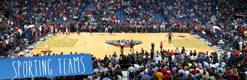 New Orleans Pelicans Basketball 2015 2016 Season