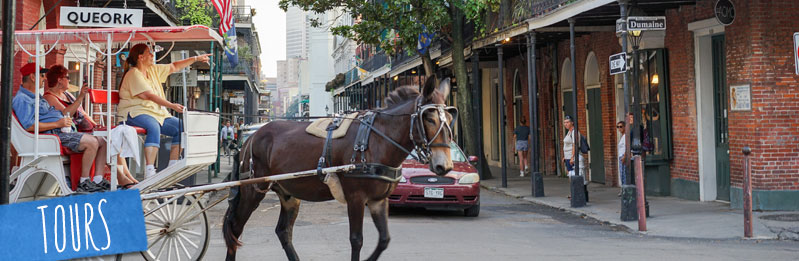 Image result for private tours new orleans