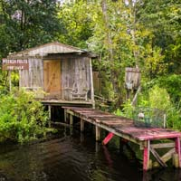Jean Lafitte Swamp and Airboat Tours