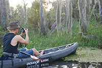 New Orleans Kayak Swamp Tour