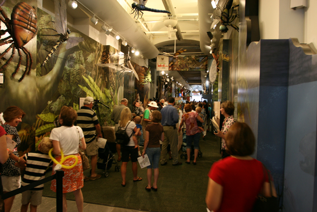 Hotels In New Orleans >> Audubon Butterfly Garden and Insectarium   New Orleans   Attraction