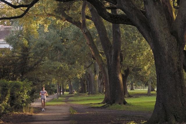 New Orleans Coupons >> Audubon Park   New Orleans   Attraction