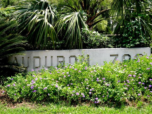 Audubon Park | New Orleans | Attraction