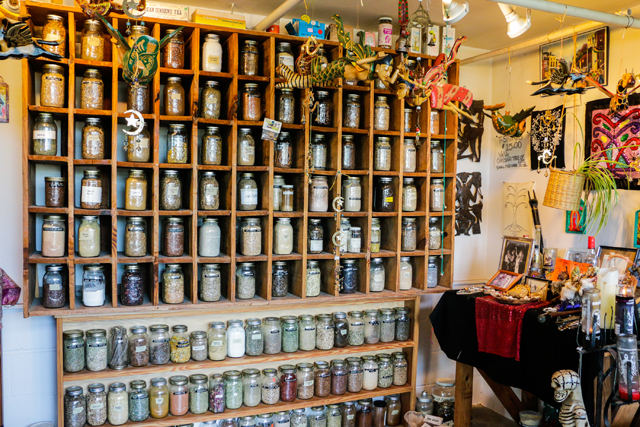 Island of Salvation Botanica | New Orleans | Shopping