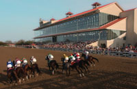 Horse Racing at the Fair Grounds