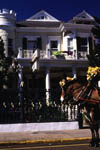 Horse Carriage in Front of Cornstalk Fence