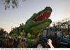 The Alligator Superfloat in the Bacchus Parade